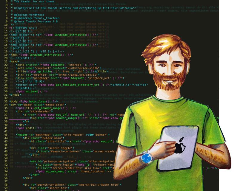 web_entwickler